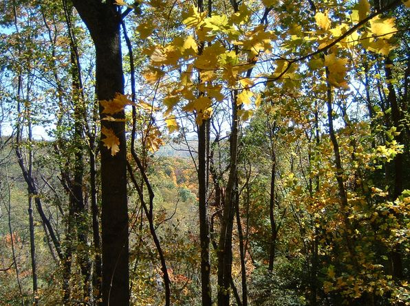 null bed null bath Vacant Land at  Telemark Ln Seven Devils, NC, 28604 is for sale at 40k - 1 of 5