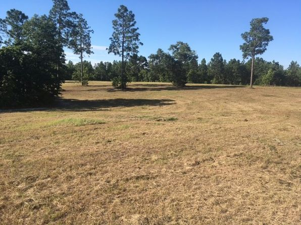 null bed null bath Vacant Land at 33.14 Ac Pine Acres Rd Windsor, SC, 29856 is for sale at 186k - 1 of 6