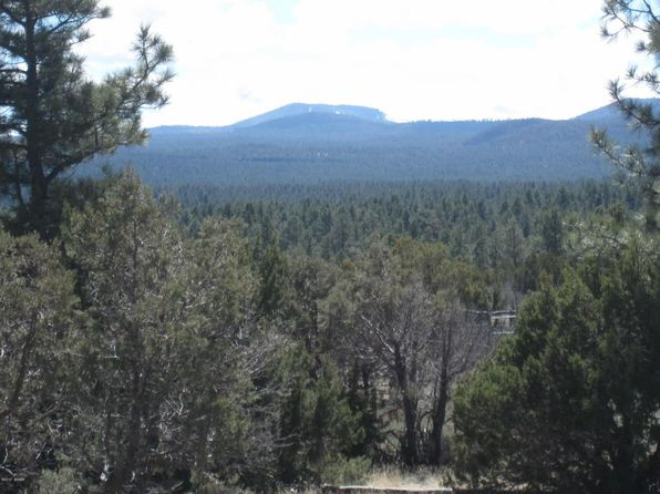 null bed null bath Vacant Land at 40.88 Acre Vernon, AZ, 85940 is for sale at 225k - 1 of 8