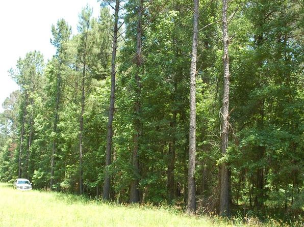 null bed null bath Vacant Land at 0000 110 Hwy Fitzpatrick, AL, 36029 is for sale at 170k - 1 of 11