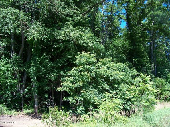 null bed null bath Vacant Land at  Parcel D Hartford, MI, 49057 is for sale at 40k - google static map