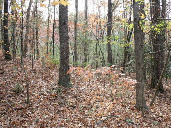 null bed null bath Vacant Land at 16 Choctaw Rdg N Dahlonega, GA, 30533 is for sale at 45k - 1 of 8