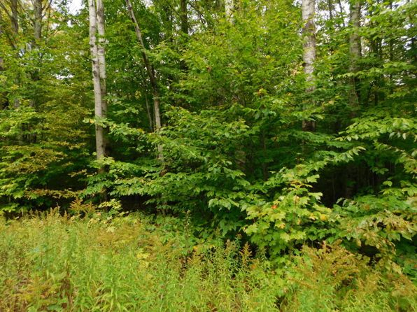 null bed null bath Vacant Land at  Maple Forest Dr Frederic, MI, 49733 is for sale at 8k - 1 of 8