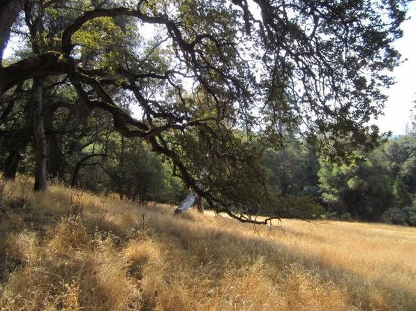 null bed null bath Vacant Land at 2884 DYER WAY PLACERVILLE, CA, 95667 is for sale at 43k - 1 of 11