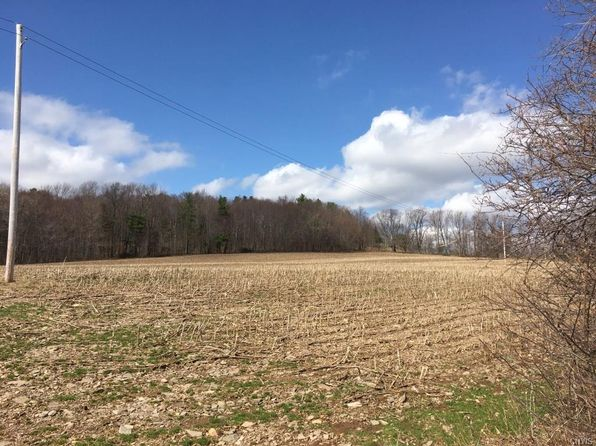 null bed null bath Vacant Land at 00 Pomeroy Rd Franklin, NY, 13846 is for sale at 190k - 1 of 9