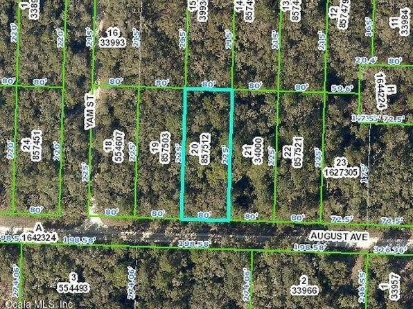 null bed null bath Vacant Land at 33479 AUGUST AVE WEBSTER, FL, 33597 is for sale at 6k - google static map