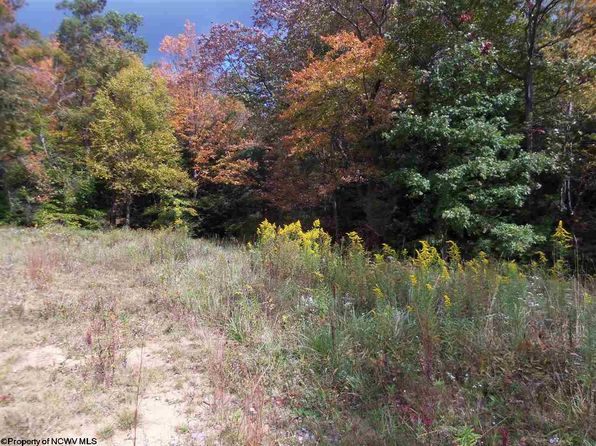null bed null bath Vacant Land at 21 29 30 Mountain Laurel Way Terra Alta, WV, 26764 is for sale at 24k - 1 of 20