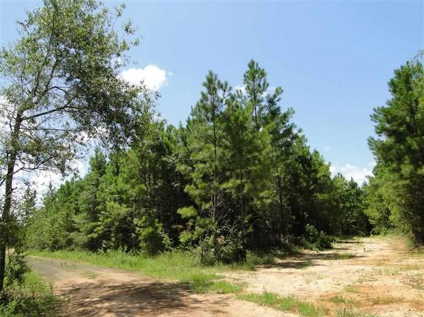 null bed null bath Vacant Land at 290 Daisy Ln San Augustine, TX, 75972 is for sale at 74k - 1 of 5