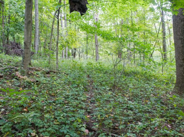 null bed null bath Vacant Land at  Tiber Rd Jacobsburg, OH, 43933 is for sale at 80k - 1 of 29