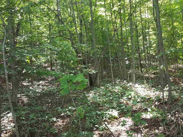 null bed null bath Vacant Land at 00 Bartholomew Rd East Jordan, MI, 49727 is for sale at 18k - 1 of 11