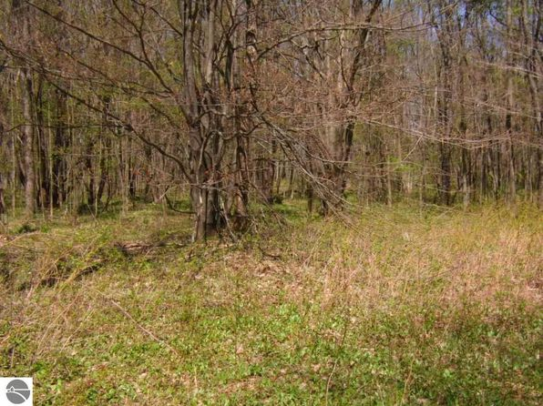 null bed null bath Vacant Land at 00 Hidden Meadow Trl Beulah, MI, 49617 is for sale at 25k - 1 of 6