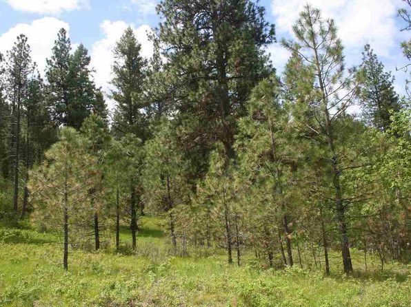 null bed null bath Vacant Land at L20 Misty Mountain Trl Lowman, ID, 83637 is for sale at 22k - 1 of 17