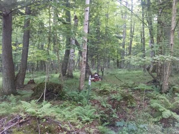 null bed null bath Vacant Land at 3580 Hwy 17 Phelps, WI, 54554 is for sale at 65k - 1 of 5