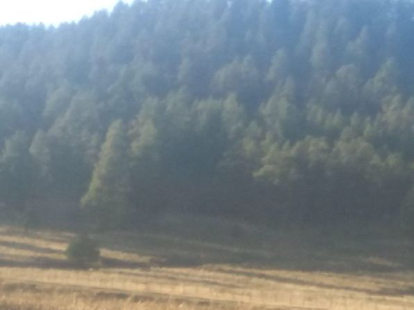 null bed null bath Vacant Land at  Beautiful Land For Investing Pagosa Springs, CO, 81147 is for sale at 8k - 1 of 4