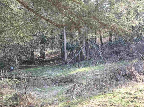 null bed null bath Vacant Land at  W Beverly St. St Kingwood, WV, 26537 is for sale at 65k - 1 of 8