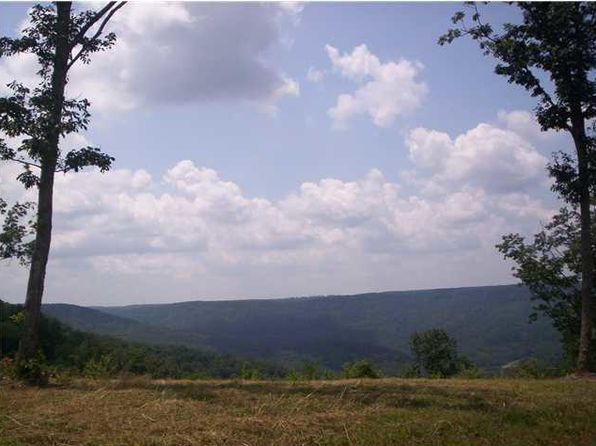 null bed null bath Vacant Land at 0 Coyote Tr Spencer, TN, 38585 is for sale at 90k - 1 of 4