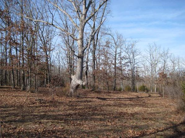 null bed null bath Vacant Land at  Tbd County Road 4360 Salem, MO, 65560 is for sale at 74k - 1 of 13