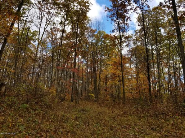 null bed null bath Vacant Land at 2600 N Wisner Ave White Cloud, MI, 49349 is for sale at 24k - 1 of 12