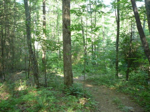 null bed null bath Vacant Land at  Sawmill Creek Road Bryson City, NC, 28713 is for sale at 29k - 1 of 15