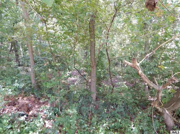 null bed null bath Vacant Land at  Lots 87/88 S Jackson Rd Jackson, MI, 49201 is for sale at 23k - 1 of 3