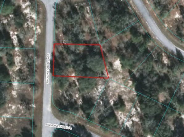 null bed null bath Vacant Land at 00 Malauka Radial Pass Ocklawaha, FL, 32179 is for sale at 6k - google static map