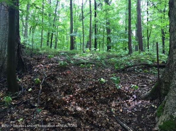 null bed null bath Vacant Land at 4137 Van Atta Rd Okemos, MI, 48864 is for sale at 93k - 1 of 13