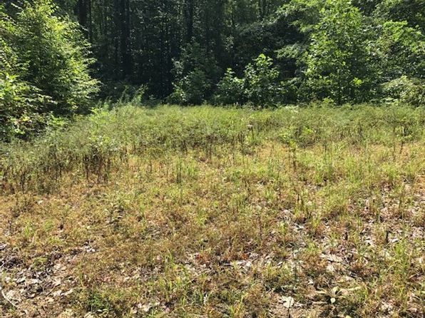 null bed null bath Vacant Land at  Sparkling Falls Rd Whittier, NC, 28789 is for sale at 25k - 1 of 10