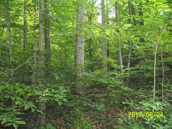 null bed null bath Vacant Land at 00 Row Ave Junior, WV, 26275 is for sale at 75k - 1 of 6
