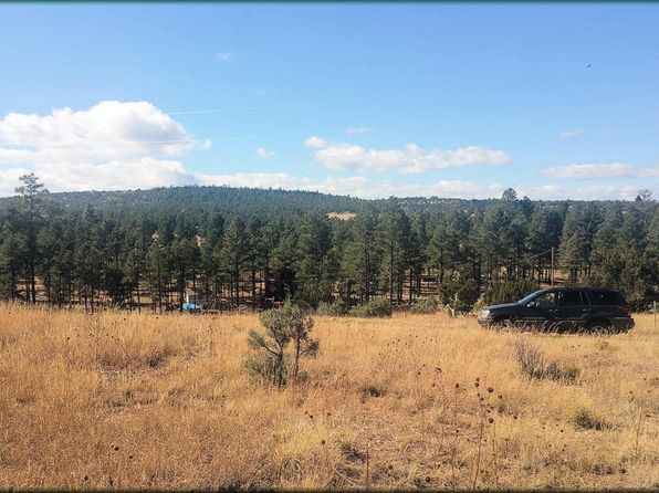 null bed null bath Vacant Land at 4098 Elk Path Clay Springs, AZ, 85923 is for sale at 30k - 1 of 6