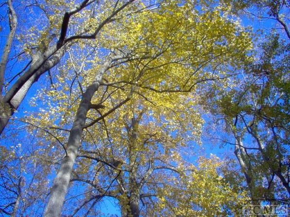 null bed null bath Vacant Land at  Meadow Crest Dr Cashiers, NC, 28717 is for sale at 75k - google static map