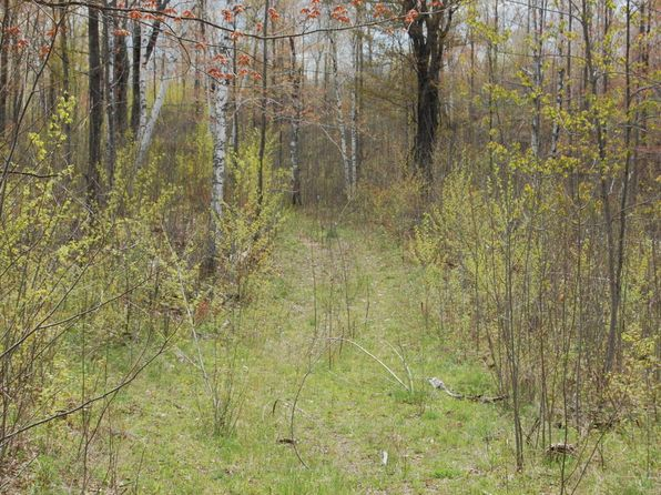 null bed null bath Vacant Land at  M-115 Marion, MI, 49665 is for sale at 90k - google static map