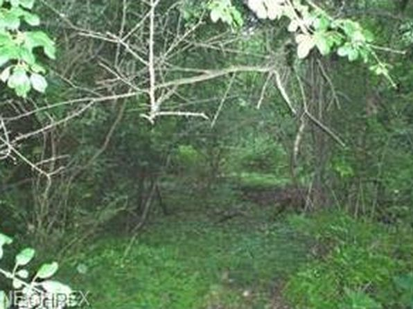 null bed null bath Vacant Land at  Vacant Akron, OH, 44313 is for sale at 6k - google static map