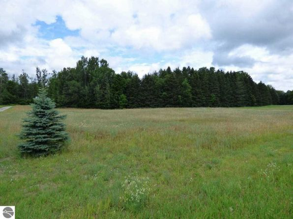null bed null bath Vacant Land at 000 S Bellaire, MI, 49615 is for sale at 20k - 1 of 17