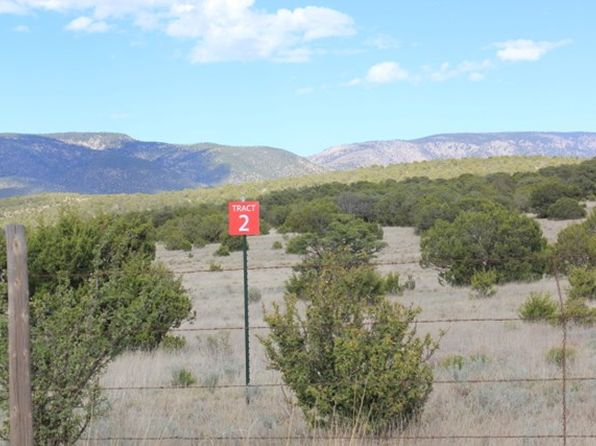 null bed null bath Vacant Land at TR2 Hwy 246 Capitan, NM, 88316 is for sale at 200k - 1 of 3