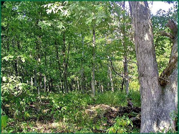 null bed null bath Vacant Land at  Opal Ln Edwards, MO, 65326 is for sale at 9k - 1 of 14