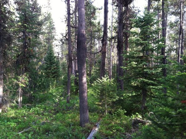 null bed null bath Vacant Land at 4032 Salt Lick Loop Rd Island Park, ID, 83429 is for sale at 50k - 1 of 10
