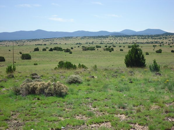 null bed null bath Vacant Land at  Highway 61 Concho, AZ, 85924 is for sale at 18k - 1 of 11