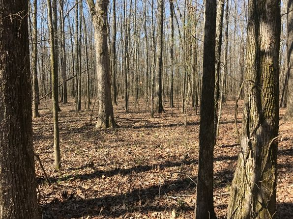 null bed null bath Vacant Land at  Payne Field Rd West Point, MS, 39754 is for sale at 65k - 1 of 5