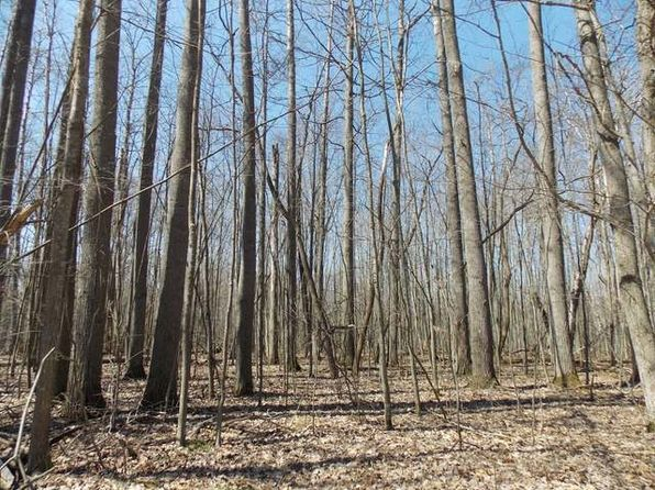 null bed null bath Vacant Land at  Oak Run Farwell, MI, 48622 is for sale at 4k - 1 of 6