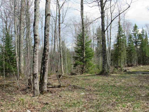 null bed null bath Vacant Land at  Parcel F Section Sixteen and M28 Rd Lat 46.56416 L Covington, MI, 49919 is for sale at 25k - 1 of 34
