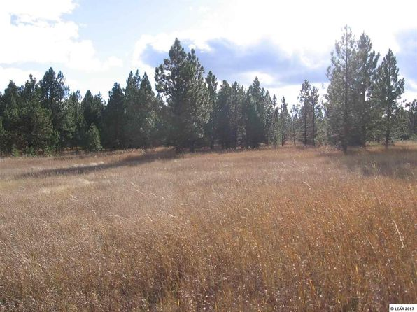 null bed null bath Vacant Land at  E Mountain Rd Anatone, WA, 99401 is for sale at 30k - google static map