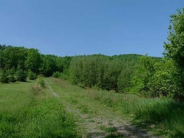 null bed null bath Vacant Land at 3 Primrose Dr Hillsdale, NY, 12529 is for sale at 65k - 1 of 3