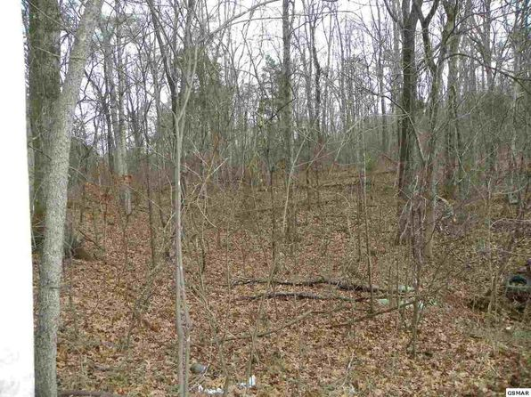 null bed null bath Vacant Land at  Tract 1 W. Dumplin Valley Rd Dandridge, TN, 37725 is for sale at 43k - 1 of 10