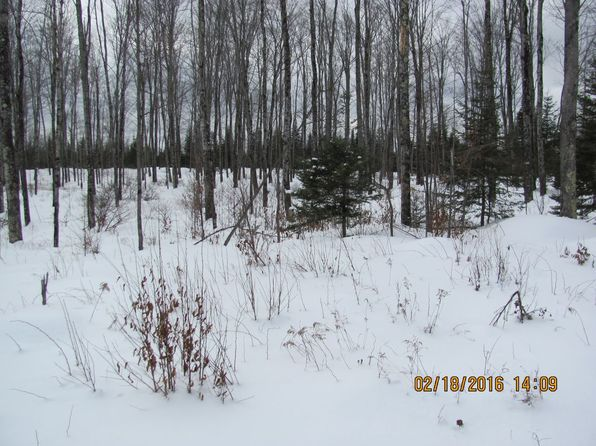 null bed null bath Vacant Land at 7211 S River Rd Rapid River, MI, 49878 is for sale at 195k - 1 of 27