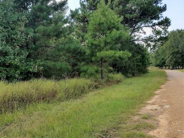 null bed null bath Vacant Land at CR 1200 Daingerfield, TX, 75683 is for sale at 25k - 1 of 11