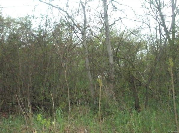 null bed null bath Vacant Land at VL Andersonville Springfield Twp, MI, 48346 is for sale at 55k - google static map