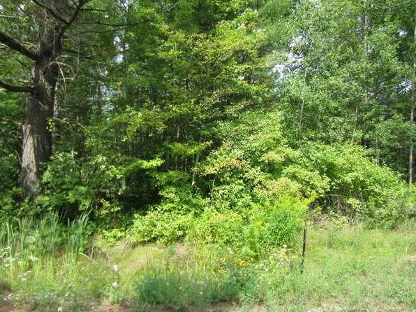 null bed null bath Vacant Land at ON Birchwood Rd Alger, MI, 48610 is for sale at 7k - 1 of 3