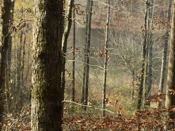 null bed null bath Vacant Land at  Riggs Rd Ellijay, GA, 30540 is for sale at 120k - 1 of 10