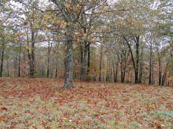 null bed null bath Vacant Land at  Panorama Dr Cape Fair, MO, 65624 is for sale at 25k - 1 of 11
