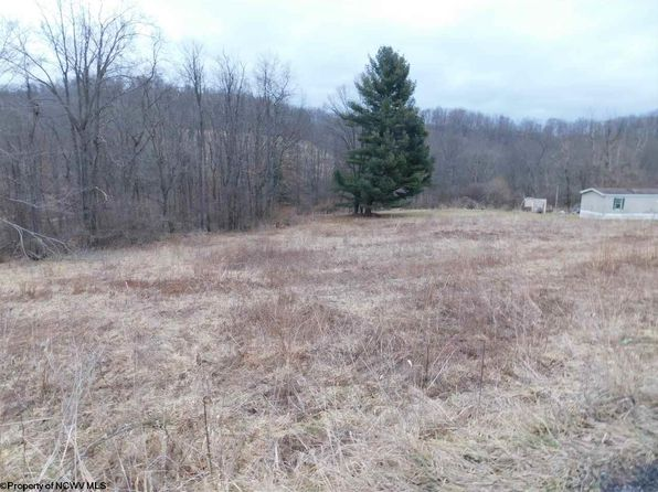 null bed null bath Vacant Land at 1493B Pleasantdale Rd Kingwood, WV, 26537 is for sale at 20k - 1 of 4